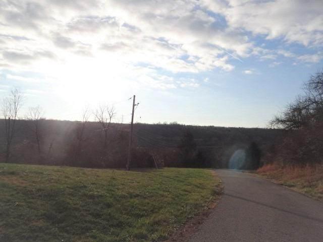 83 Diamond Hill Road, Ohio Twp, OH 45157 (#1685950) :: The Chabris Group