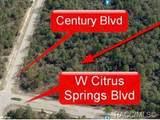 4631 Citrus Springs Boulevard - Photo 9