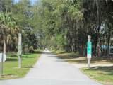 2056 Beach Plum Drive - Photo 5