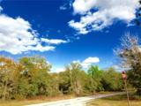 2590 Bravura Drive - Photo 10