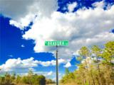 2590 Bravura Drive - Photo 13