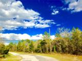 2590 Bravura Drive - Photo 6