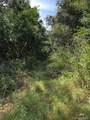 14440 Stone Island Drive - Photo 5