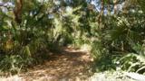 7175 Nature Trail - Photo 6