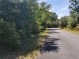 12752 Cypress Vine Lane - Photo 2