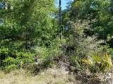 12752 Cypress Vine Lane - Photo 3