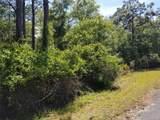 12752 Cypress Vine Lane - Photo 4