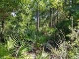 12752 Cypress Vine Lane - Photo 5