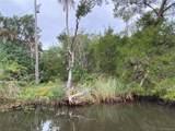 12491 The Homosassa River River - Photo 7
