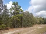 5889 Costa Mesa Lane - Photo 14