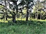 6377 Homosassa Trail - Photo 1