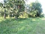 6377 Homosassa Trail - Photo 2