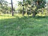 6377 Homosassa Trail - Photo 3