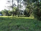 6377 Homosassa Trail - Photo 4