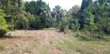 11441 Brown Pelican Path - Photo 23
