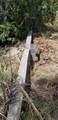 11441 Brown Pelican Path - Photo 26