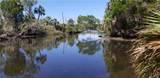 11441 Brown Pelican Path - Photo 42
