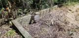 11441 Brown Pelican Path - Photo 48