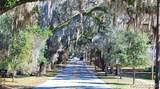 1635 Citrus Springs Boulevard - Photo 17