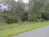 11927 Cockscomb Drive - Photo 1