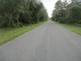 11927 Cockscomb Drive - Photo 3