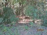 1779 Mooneys Point - Photo 1