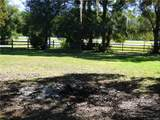 718 Mulberry Point - Photo 24