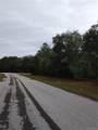 9402 Athenia Drive - Photo 5