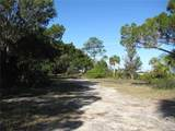 360 Mullet Point - Photo 12