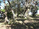 360 Mullet Point - Photo 14