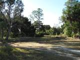360 Mullet Point - Photo 9