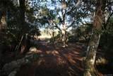 3123 Graymor Path - Photo 11