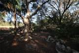 3123 Graymor Path - Photo 13