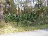 0000 Osceola Road - Photo 7