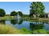 1679 Spring Meadow Loop - Photo 28