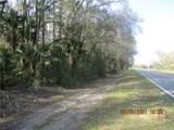 7768 Citrus Avenue - Photo 2