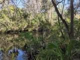 13651 Foss Groves Path - Photo 14