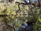 13651 Foss Groves Path - Photo 2