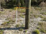 13651 Foss Groves Path - Photo 20