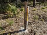 13651 Foss Groves Path - Photo 21