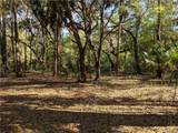 13651 Foss Groves Path - Photo 3
