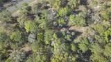 13651 Foss Groves Path - Photo 35