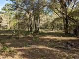 13651 Foss Groves Path - Photo 6