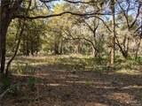 13651 Foss Groves Path - Photo 7
