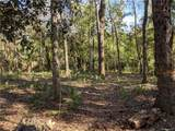 13651 Foss Groves Path - Photo 9