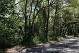 3341 Lake Nina Drive - Photo 2