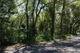 3341 Lake Nina Drive - Photo 3