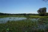 3341 Lake Nina Drive - Photo 9