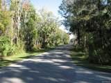 0 Citrus Avenue - Photo 6