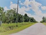 00 Papaya Lane - Photo 4